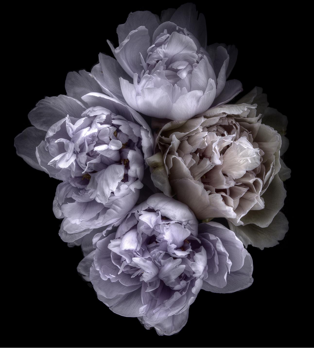ballet floral la vall e village blog la beaut selon une parisienne. Black Bedroom Furniture Sets. Home Design Ideas